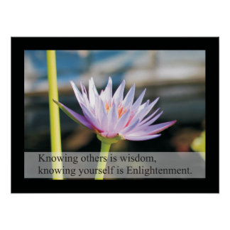 Natural Health Quotes and Sayings Poster Lao Tzu