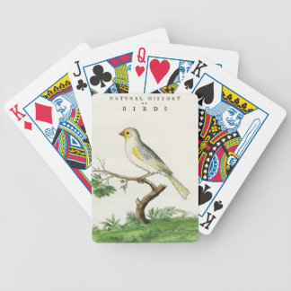 Natural History of Birds Bicycle Playing Cards