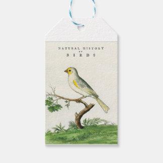 Natural History of Birds Gift Tags