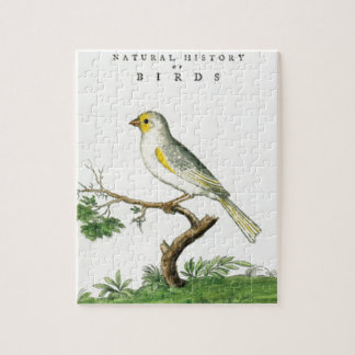 Natural History of Birds Jigsaw Puzzle