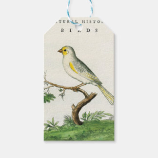 Natural History of Birds - Labels For Gifts Pack Of Gift Tags