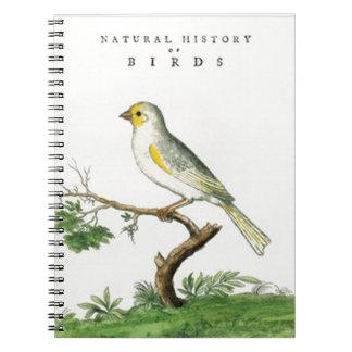 Natural History of Birds Notebook