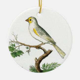 Natural History of Birds Round Ceramic Ornament