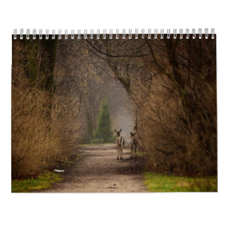 Natural Influence Photography 2016 Calendar