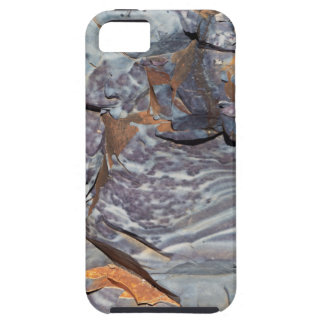 Natural layers of agate in a sandstone case for the iPhone 5