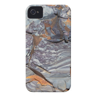 Natural layers of agate in a sandstone iPhone 4 Case-Mate cases