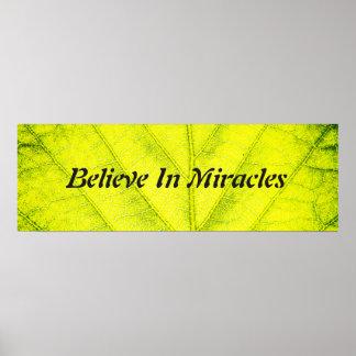 Natural Miracles Poster