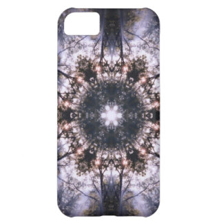 Natural Order iPhone 5 Case