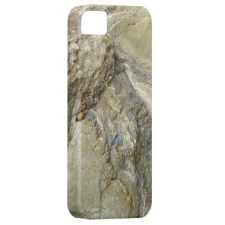 Natural rock phone case
