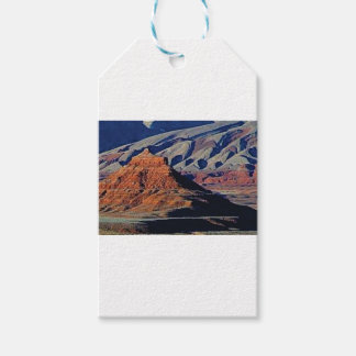 natural shapes of the desert gift tags