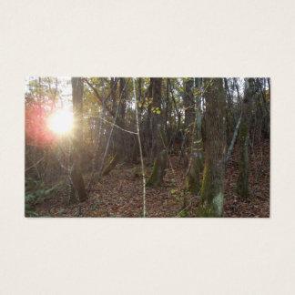 Natural   surroundings Card   Visit