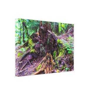 Natural Tree Trunk Canvas Print