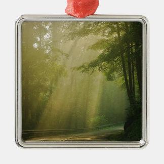 Natural Tunnel Silver-Colored Square Ornament