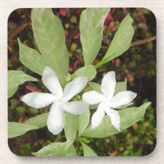 Natural White Beautiful Flower Coaster