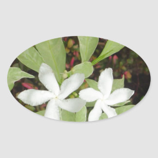 Natural White Beautiful Flower Oval Sticker