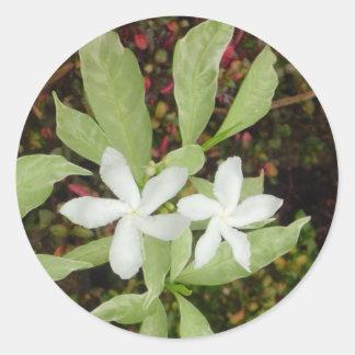 Natural White Beautiful Flower Round Sticker