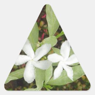 Natural White Beautiful Flower Triangle Sticker