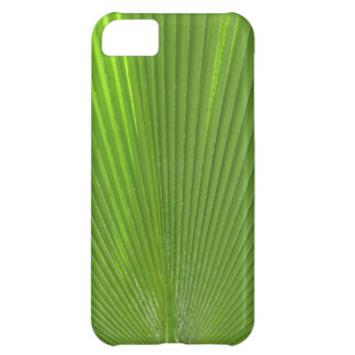 Naturally Cool Surfaces_Radiating Palm Frond iPhone 5C Cover