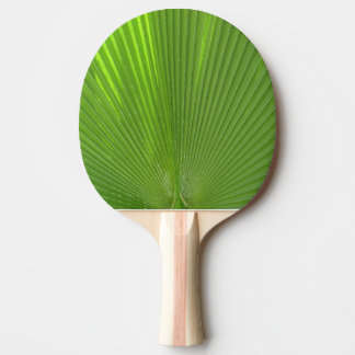 Naturally Cool Surfaces_Radiating Palm Frond Ping-Pong Paddle