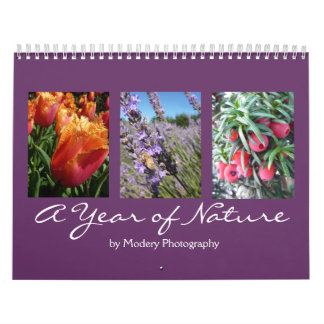 Nature 2017 wall calendars