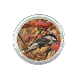 Nature Autumn Foliage with Chickadee Bird Rings