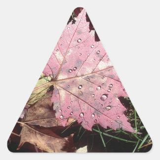 Nature Autumn Leaf Raindrops Triangle Sticker