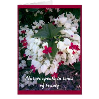 Nature Card 2
