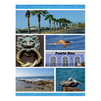Nature collage of San Juan, Puerto Rico Postcard