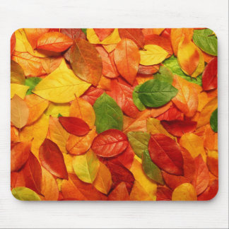 nature colorful leaves mouse pad