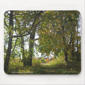Nature Conservancy Hiking trails at Uplands Farm Mouse Pad