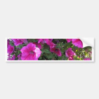 Nature, Flora, Pink Flower Bumper Sticker