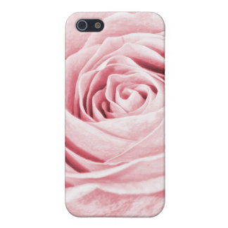 Nature Floral Photo Dainty Girly Pink Rose iPhone 5 Covers