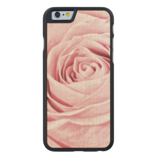 Nature Floral Photo Dainty Girly Pink Rose Carved® Maple iPhone 6 Case