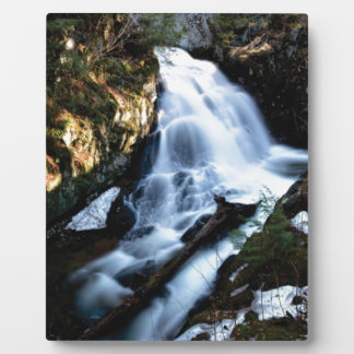 nature flows of water plaque