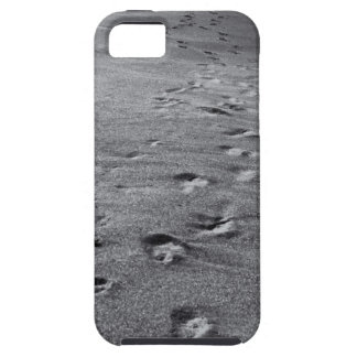 nature footprints case for the iPhone 5