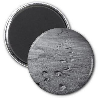 nature footprints magnet