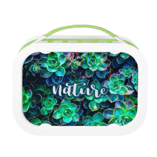 Nature Green Succulent Photo Lunch Box