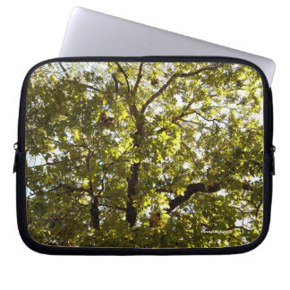 Nature Green Tree in Sunlight Laptop Sleeve