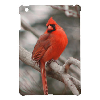 Nature iPad Mini Cases