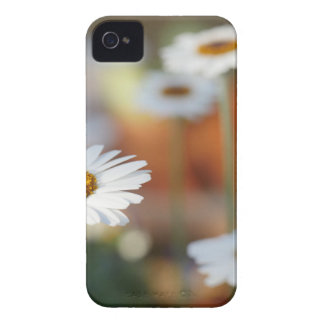 nature iPhone 4 Case-Mate case