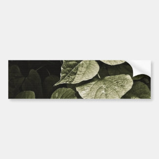 Nature Leaves Composition Bumper Sticker