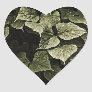 Nature Leaves Composition Heart Sticker