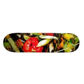 Nature Morte 18 Skateboard