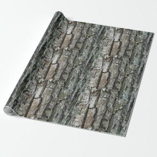 Nature Old Pine Bark