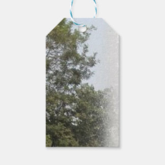 nature pack of gift tags