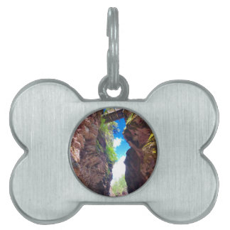 Nature Pet Tag