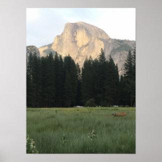 Nature Photo- Yosemite Poster
