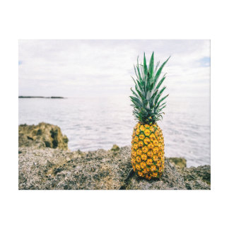 Nature photography    pineapple   ocean canvas print