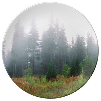 Nature pine wood morning photo Decorative Plate Porcelain Plate