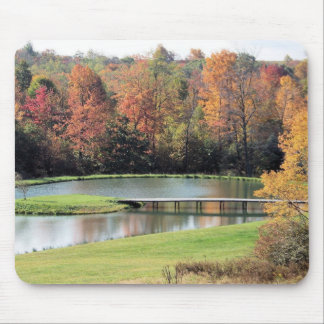 NATURE: POND AND WOODS MOUSE PAD